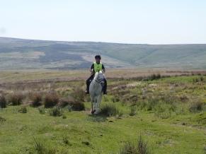 Pet on Exmoor (3)